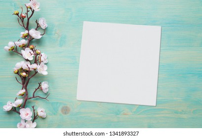 Abstract spring background of painted blue board with branch of flowering cherry branch covered with white flowers and white square blank paper sheet or canvas with place for text