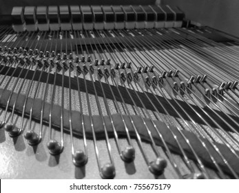 abstract strings inside piano black and white