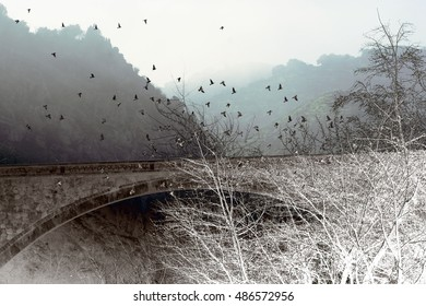 abstract surreal landscape photography of the bridge with  flying  birds over river Tagus n city of Toledo, Castilla La Mancha, Spain