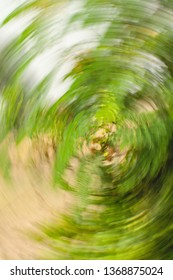 Abstract Swirl backgrounds of nature