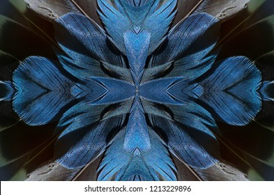 Abstract symmetric pattern of blue, grey and black feathers of wild duck close-up as background. The texture of the wing feathers. The image with mirror effect. Kaleidoscopic abstract pattern