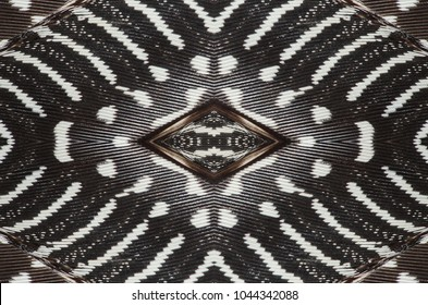 Abstract symmetric pattern of feathers of guinea fowl close-up as background. Macro of the gray wing feathers of a guinea hen. The image with mirror effect.