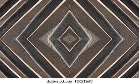 Abstract symmetric pattern of feathers of wild duck close-up as background. Macro of the brown feathers of a thrush bird. An ornamental surreal tracery of bird feathers. The image with mirror effect.