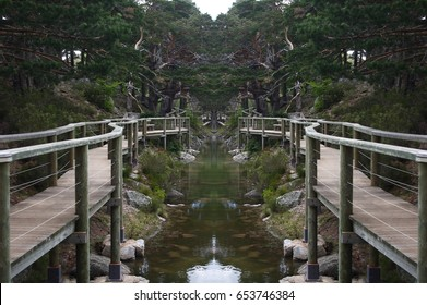 Abstract Symmetrical Photographs of Wooden Paths with Railing, Abstract symmetrical pictures , Black Lagoon of Picos de Urbión, Soria, Spain,abstract photography surreal, expressionist, naturalist,