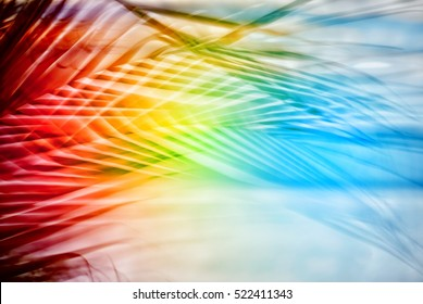 Tropical rainbow images stock photos vectors shutterstock for Tropical smoothie palm beach gardens