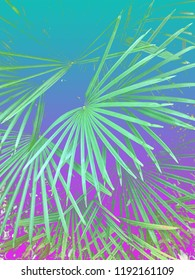 Abstract turquoise and pink color gradient background texture of tropical 90s/80s style palm leaves.