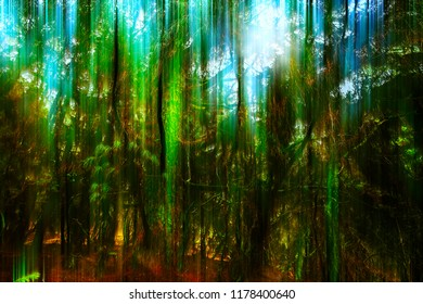 Abstract version of mossy jungle with backlight.