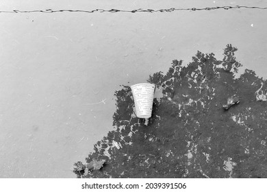 Abstract view of a coffee recycled paper cup thrown in a puddle of water with tree and electric lines mirrored reflections.