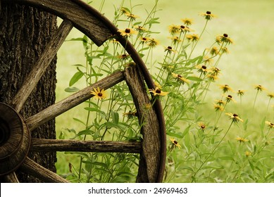 An abstract of a wagon wheel with Black-Eyed-Susans blooming around it in the morning Summer light.