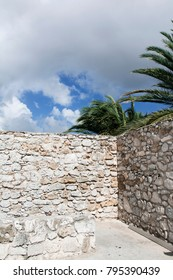 Abstract wall with palmtree and sky