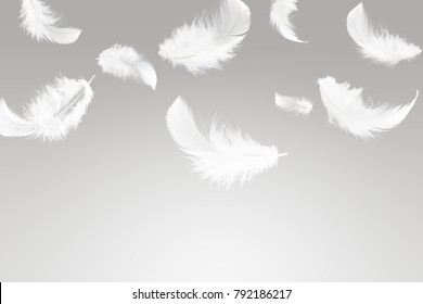Abstract white feather falling in the air