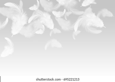 Abstract White feathers falling in the air