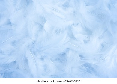 Abstract white texture feathers background
