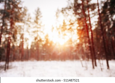 Abstract Winter Natural Blurred Forest Background. Bokeh, Boke Woods With Sunlight, Red and Yellow Warm Colors of Nature. Beautiful Sunset Sunrise Sun Sunshine In Sunny Winter Snowy Forest.