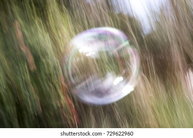 Abstraction of soap bubble panning in green garden with sunlight reflections.