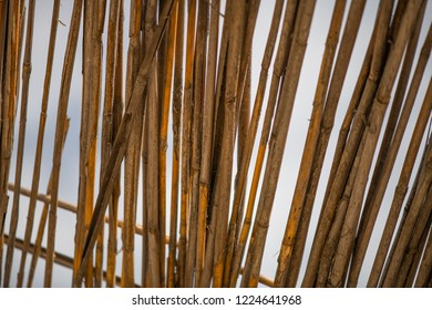 Abstrakt background roof from dry bamboo branches against the sky texture