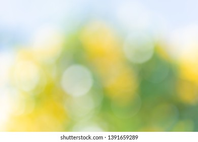 Abstrct defocused colorful green yellow  blurred bokeh background