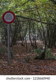 "Absurd traffic sign ""authorized vehicles only"" in midst of the woods without any possibility of transit. Vitoria, Alava, Basque Country, Spain"