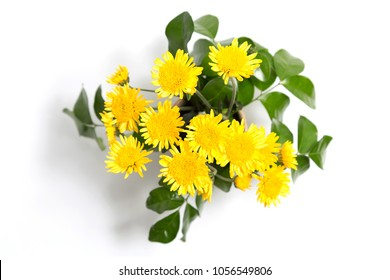 Terracotta flower vase images stock photos vectors shutterstock abtract of top view yellow flowers and leaves are beautiful and fresh in terracotta vases placed mightylinksfo