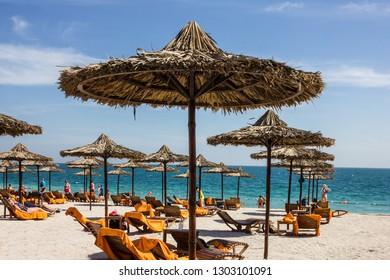 Abu Dhabi, UAE - Feb 3, 2019: Beach in Sir Bani Yas island.