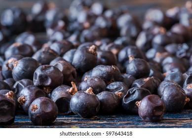 Abundance of Juniper Berries Scattered