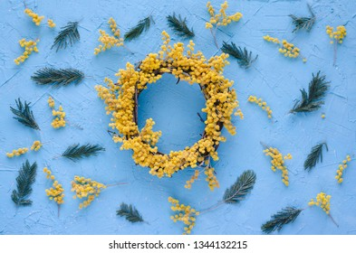 Acacia flower wreath on blue background. Acacia dealbata. womens day, mothers day, spring concept. Flay lay, top vew