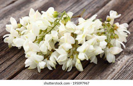 Acacia flowers on a wooden background