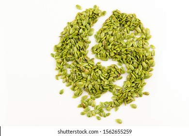 Acacia, Lead tree  seeds are arranged in a yin and yang pattern on a white background.