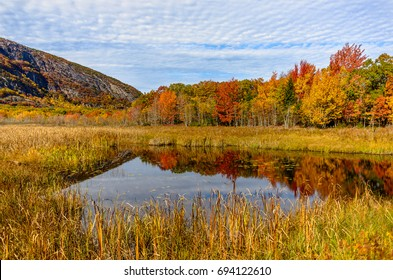 Acadia National Park - Reflection