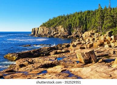 Acadia N.P. Maine