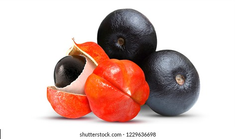 Acai and Guarana - Exotic Fruit