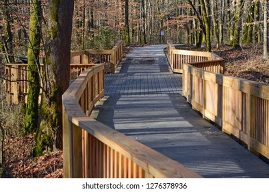 Accessibly designed hiking trail in scenic, natural setting at Mammoth Cave National Park allowing people with mobility limitations to experience nature.