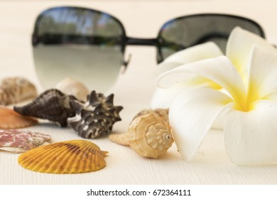 accessories fashion lifestyle woman on summer relax on white