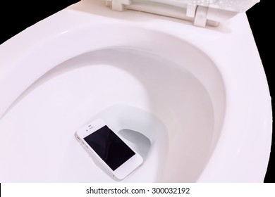 Accident, smart phone wet fell in the toilet bowl.