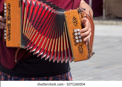 accordion player acoustic irish music