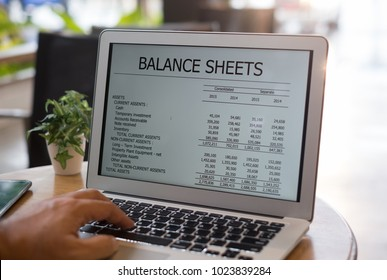 accounting software online.  balance sheet report on computer screen by e-learning computer training at home.
