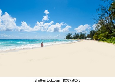 Accra Beach - tropical beach on the Caribbean island of Barbados. It is a paradise destination with a white sand beach and turquoiuse sea.
