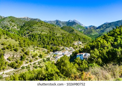 Acebuchal, Andalusia, Spain: Panoramic view of small secluded village of white houses amongs green forest.