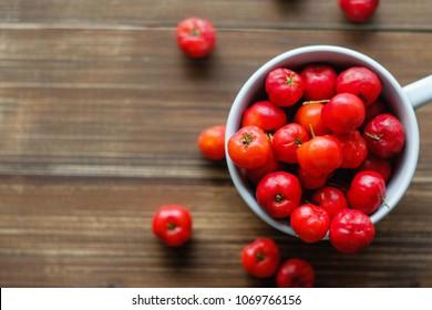 Acerola cherry , Barbados cherry , West indian cherry (Malpighiaceae).