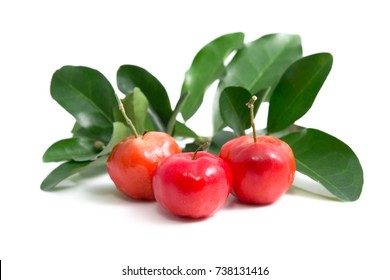 Acerola small cherry fruit with leaf isolated on white background. Acerola cherry is high vitamin C and antioxidant fruits. Selective focus