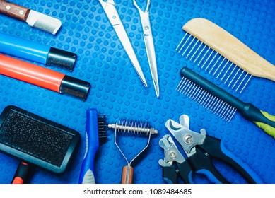 Acessories for the grooming and nail clipper for cats and dogs. The concept of advertising grooming and caring for dogs. Many tools for trimming
