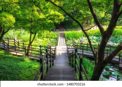 acha mountain ecological park pond with elevated trails in gwangjingu region of seoul south korea.