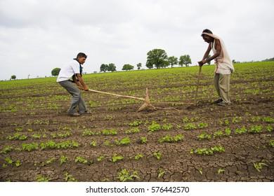 Achalpur Hd Stock Images Shutterstock