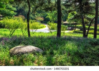 achasan mountain ecological park trail and bench. Taken in Seoul, South Korea