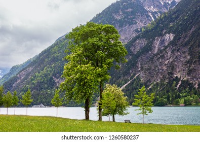 Achensee ( Lake Achen) summer landscape with green meadow and wooden bench on shore (Austria).