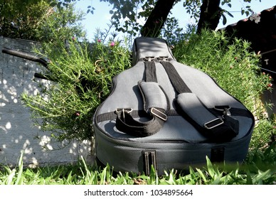 Acoustic guitar bag outdoors surrounded by plants and tree.