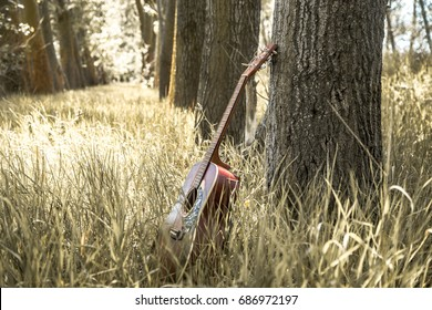 Acoustic guitar nature ,the concept of music and nature