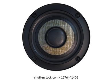 Acoustic speaker isolated on white
