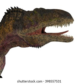 Acrocanthosaurus Dinosaur Head 3D illustration - Acrocanthosaurus was a theropod carnivorous dinosaur that lived in North America during the Cretaceous Period.