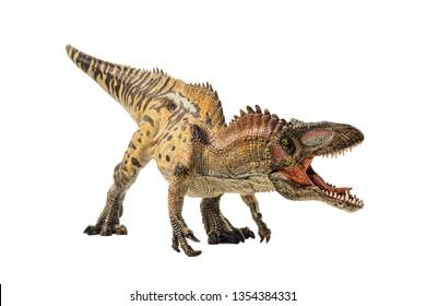 Acrocanthosaurus , Dinosaur on white background .